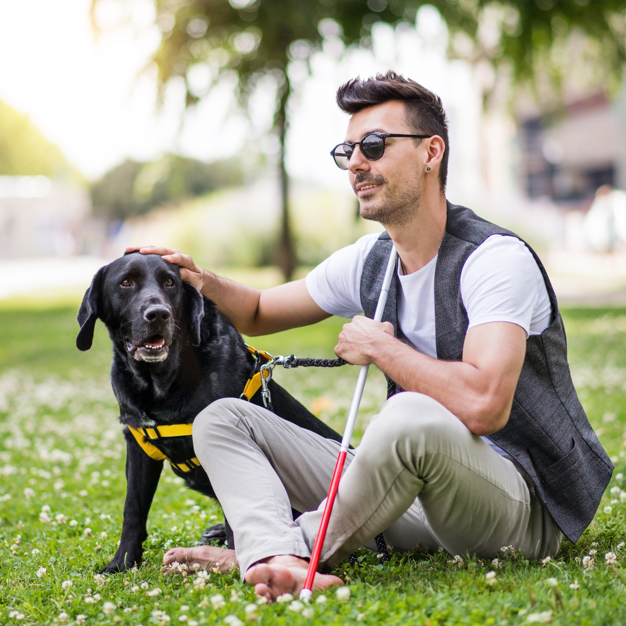 Blind man sitting in grass with guide dog